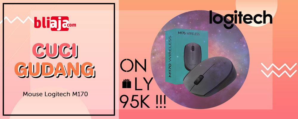 Mouse Logitech M170 Promo