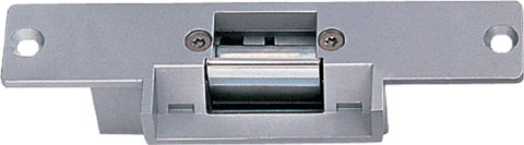 electric lock DS Series